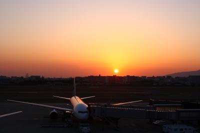 ANA B777-281 Gate11&夕景@ラ・ソーラ(by EF28-90)