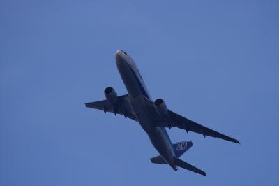 ANA B777-281 NH32 Departure@自宅前