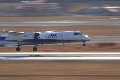 ANA DHC-8-Q400 Landing@ラ・ソーラ
