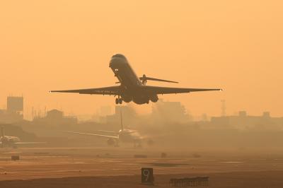 JAL MD-81 JL2051@猪名川土手