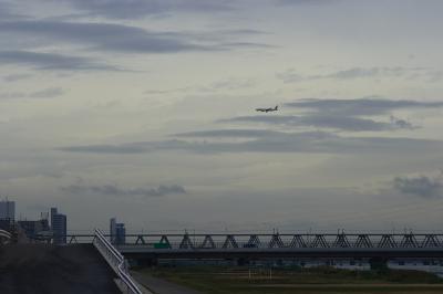 淀川西詰 with JAL B777-246@淀川大橋