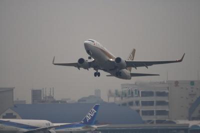 ANA B737-781 Gold Jet NH513@RWY14エンド