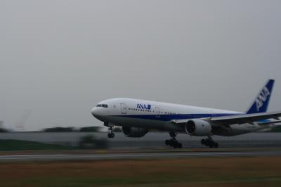 ANA B777-281 Landing@スカイランドHARADA(EF28-90/SS:1/25)
