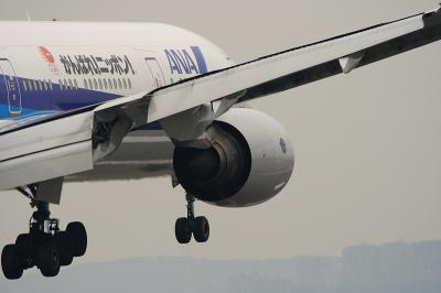 ANA B777-381 Landing@千里川土手