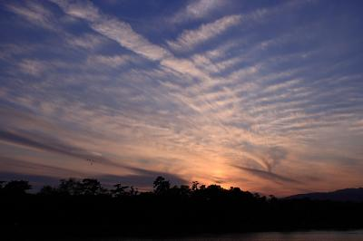 今日限りの夕空@昆陽池公園南池畔