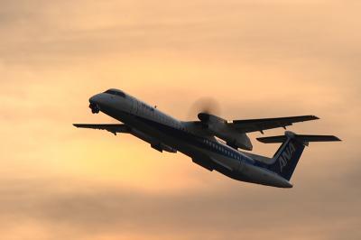 ANA DHC-8-Q400 NH1631@RWY14Rエンド