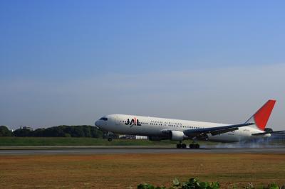 JAL B767-346 Touch Down@スカイランドHARADA