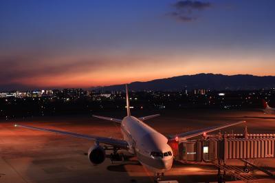 JAL B777-246 Star Jet Procyon@ラ・ソーラ