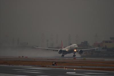 JAL B777-346ER JL3002@AFO