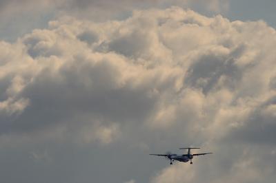 ANA DHC-8-Q400 NH1654@伊丹スカイパーク