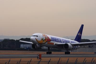 ANA B767-381 Woody Jet NH733@伊丹スカイパーク