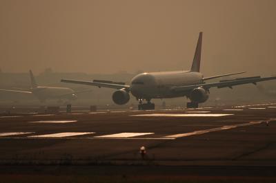 JAL B777-246 Arrival@Bラン14エンド