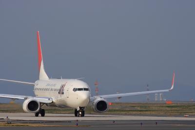 JAL B737-846 JL382@北九州空港RWY36エンド付近