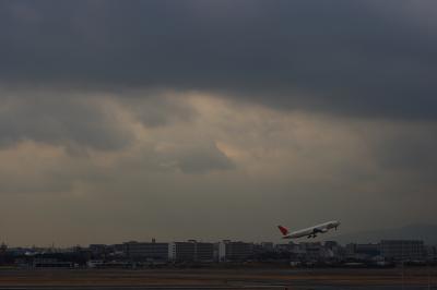 JAL B777-246 JL118&伊丹の街並@伊丹空港展望デッキ ラ・ソーラ