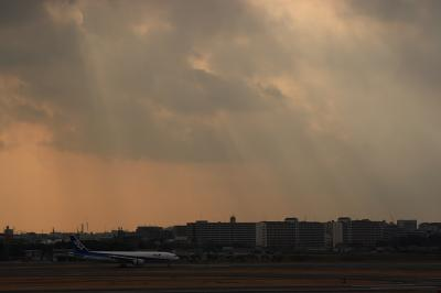 ANA B777-281 NH27&雲間から差す陽の光その弐@伊丹空港展望デッキ ラ・ソーラ