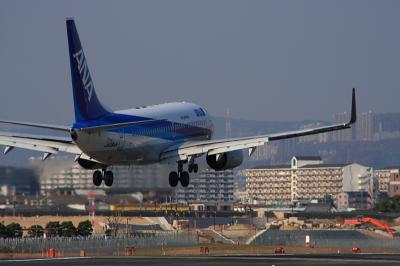 ANK B737-781 Landing@千里川土手