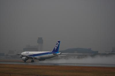 ANA A320-211 WetRolling@スカイランドHARADA