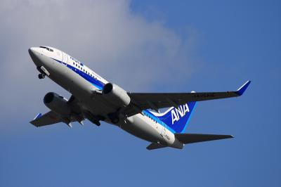 ANA B737-781 NH185 Airborne@14エンド(by EF100-400)