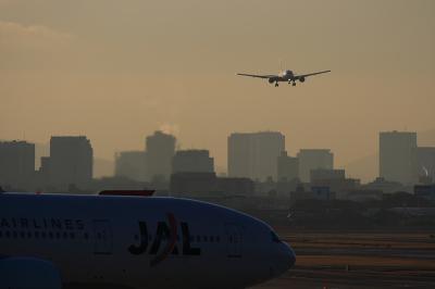 JAL B777-246 JL101&B777-346@AFO(by EF100-400)