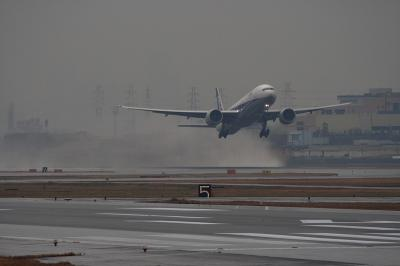 ANA B777-381ER Airborne@AFO(EF100-400)