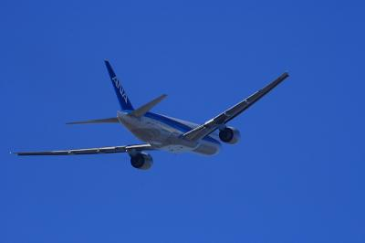ANA B777-281 Departure@AFO(by EF100-400)