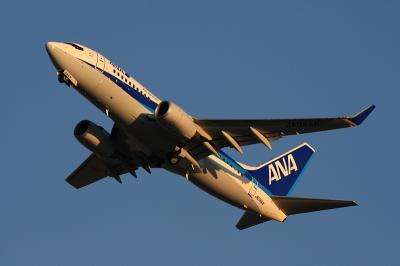 ANA B737-781 Airborne@RWY14Rエンド(by EF100-400)