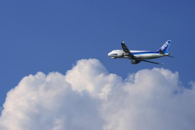 ANA A320 Airborne@14エンド