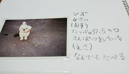 0210blog-4.jpg