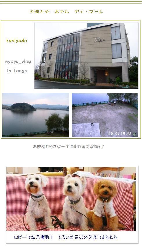10_20071209020959.jpg