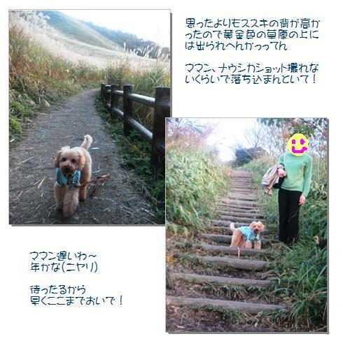 12_20071108005923.jpg