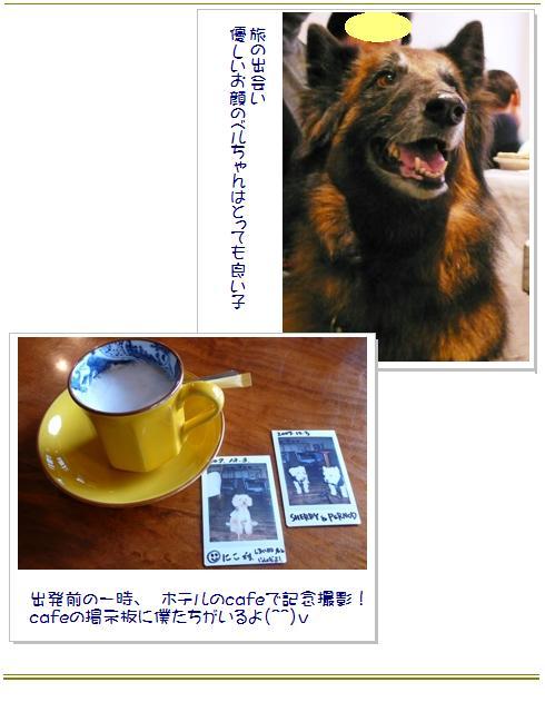 15_20071209021800.jpg
