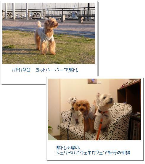 1_20071124222921.jpg