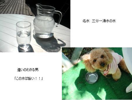 ルコック水
