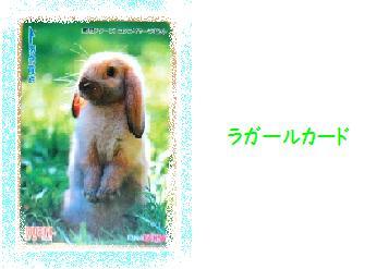 20070816001921.jpg