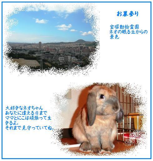 20070816004604.jpg