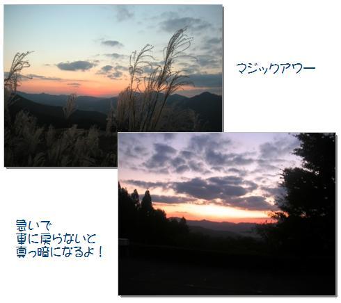 21_20071108004543.jpg