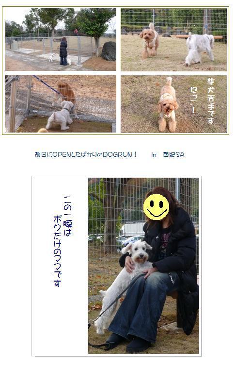 24_20071211003036.jpg