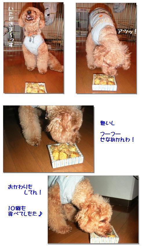 2_20071113003200.jpg