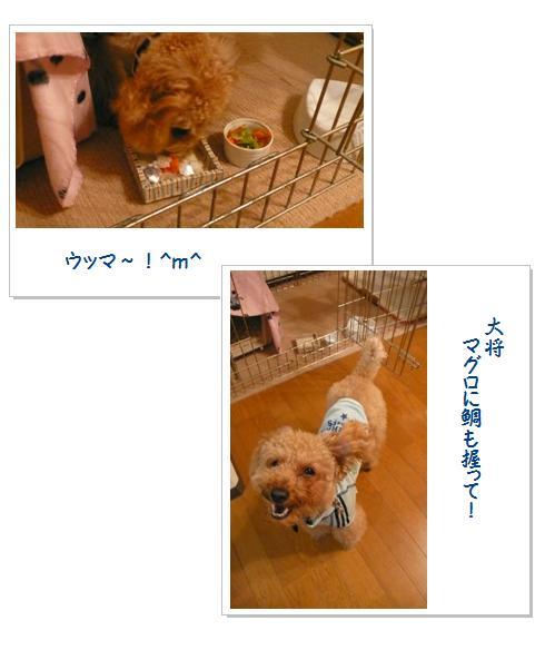 2_20071216020045.jpg