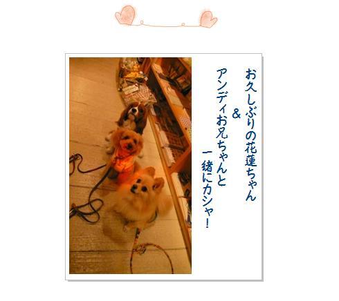 2_20071221021513.jpg