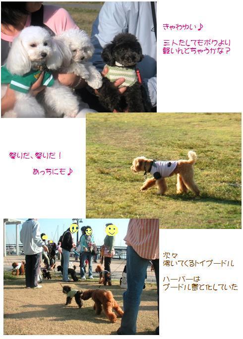 3_20071024015255.jpg