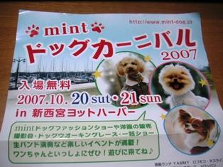 4_20071024020707.jpg