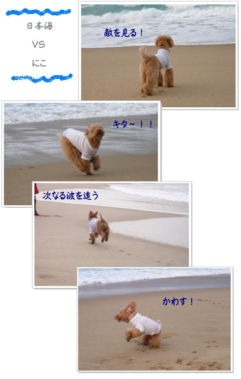 5_20071209013811.jpg