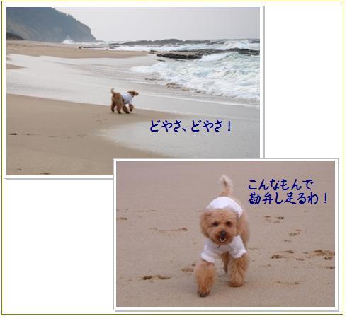 6_20071209013912.jpg