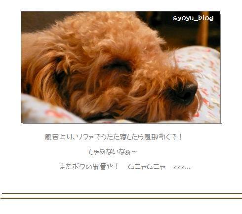 6_20071216020001.jpg