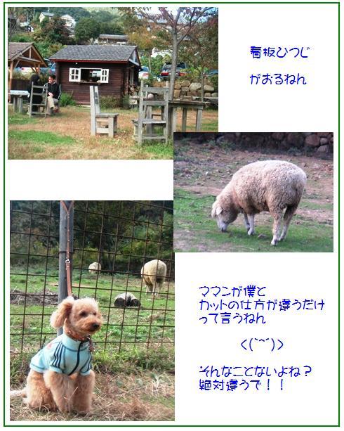 8_20071107041903.jpg