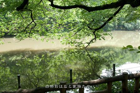 20110606-_MG_7396.jpg