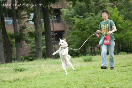 20110615-_MG_8544.jpg