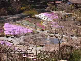 三井寺 158s