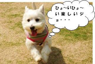 imageヒョ~イ楽しいジョ~